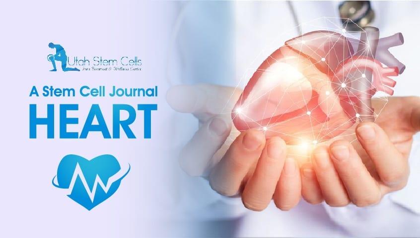 Journal Owner: Noel Zuniga